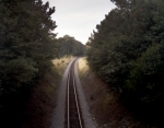 The Norfolk and Petersburg Railroad that bisects the Crater battlefield at Petersburg 2014