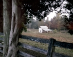 Horse farm along the western front battlefield at Petersburg 2014
