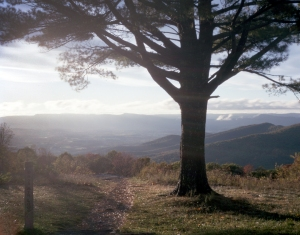 The Luray Valley from Shenandoah National Park