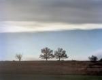 Deer on the horizon at Big Meadows in Shenandoah National Park