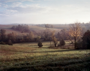 Looking toward Tumbling Run on Fisher's Hill Battlefield