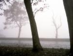 Fog should an overlook in Shenandoah National Park 2014
