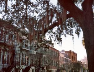 Savannah, Georgia 2014