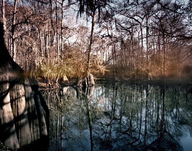 Ebenezer Creek, Springfield, Georgia 2014