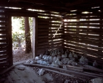 Slave cabin with empty moonshine bottles, Sylvania, Ga 2014