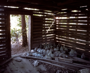 Slave cabin with empty moonshine bottles, Sylvania, Ga 2014