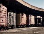 Box cars at Savannah Railroad Museum