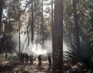 Union reenactors skirmish around Fort McAllister 2014