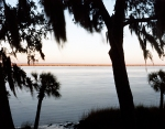 The Ogeechee River looking east towards the sea