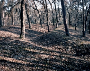 Confederate earthworks at River's bridge Battlefield