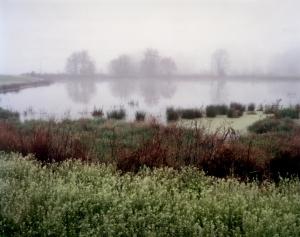 Morning fog in Rice , Virginia 2015