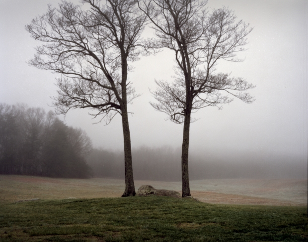 Morning fog shrouds the battlefield at Sailor's Creek.