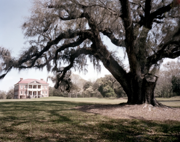 Drayton Hall was the only plantation along the Ashley River to survive the burning in 1865