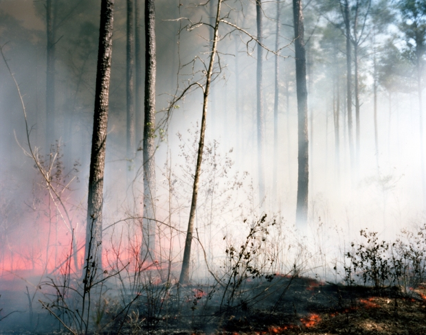 Fire near Charleston, SC. Sherman's troops would leave a smoky trail through the Carolinas in 1865.