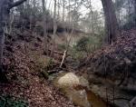 Ravine on the Battlefield at Averasboro stopped a Union flank attack