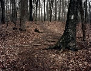 The worn path to Lee's Last Bivouac site at Appomattox, Va